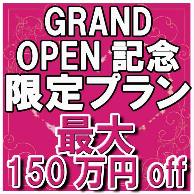 残2組★グランドオープン記念限定プラン★最大150万円OFF!2/29まで
